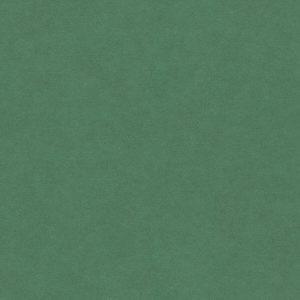 FORESCOLOR Zelená